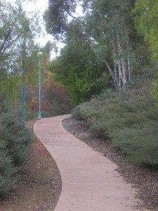 Walkway from Meanley Drive to the Library
