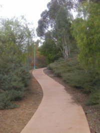 Path to the Scripps Miramar Ranch Library Center